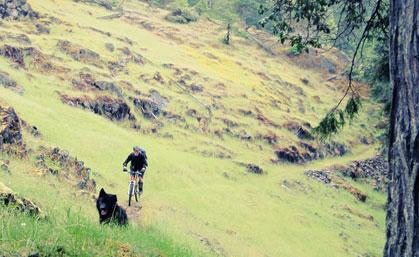 Mountain Biking for Trail Runners