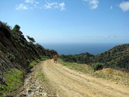 Marathon Madness: Catalina Marathon