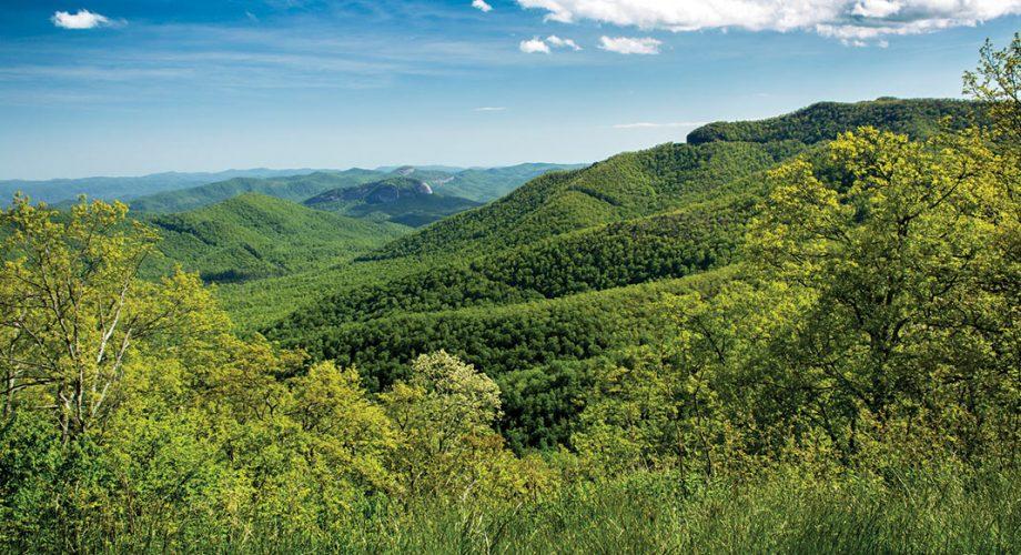 Black Mountain, North Carolina: A Southeastern Haven