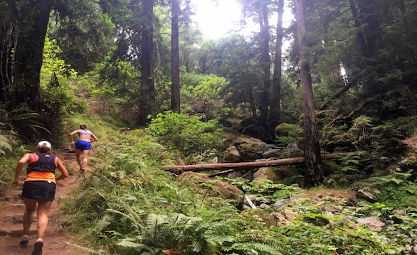 10 Awesome Trails Under 10 Miles