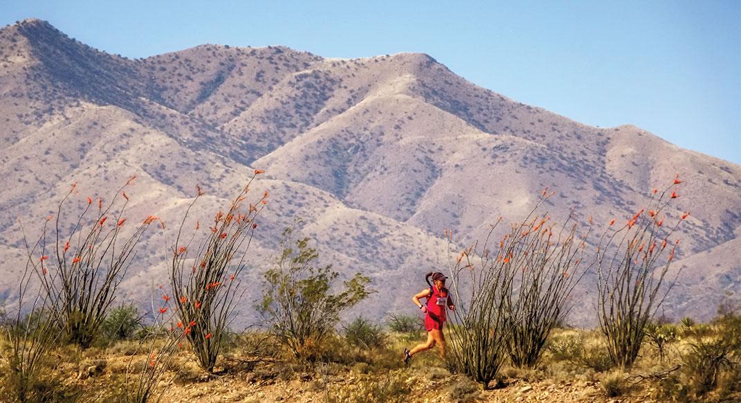 Old Pueblo Endurance Runs