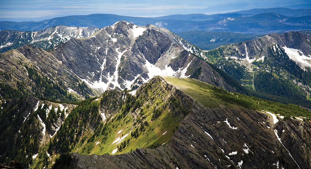 Alpine Vibes